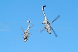 Royal navy blackcats display helicopters
