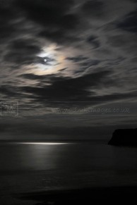 Coastline lit by moonlight