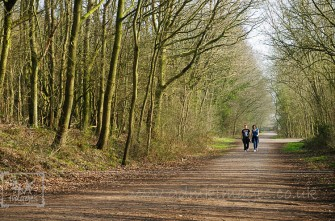Disused railway line that forms part of the walk