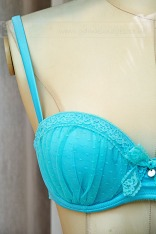weekly photo project Blue Bra