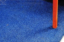 weekly photo project Blue Carpet