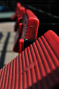 weekly photo project - red